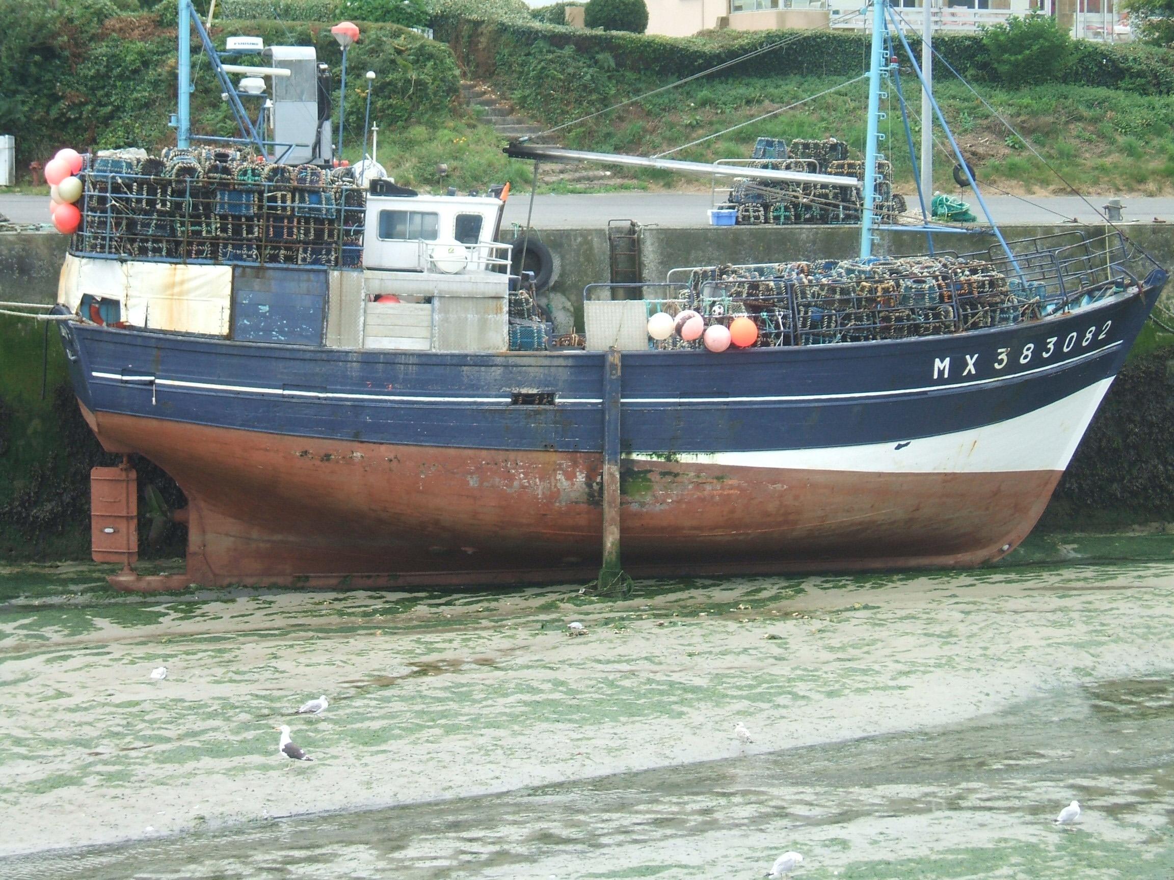 Voyage_Bretagne_2008 0252
